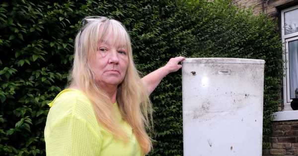 Woman's fridge stuck in her garden for four months after she paid for collection