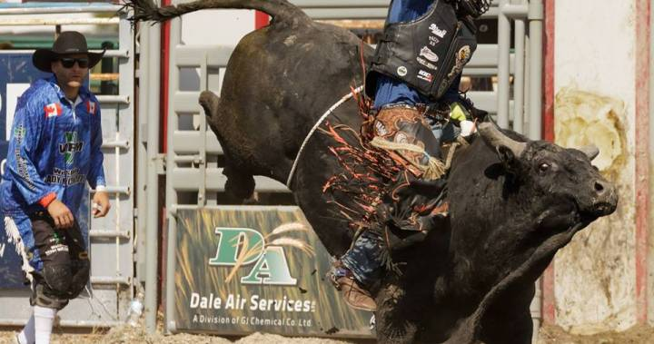 Animal rights group plans to protest Manitoba Stampede
