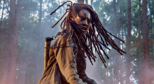 The Walking Dead's Danai Gurira takes on gritty new drama Americanah with Black Panther co-star as season 10 exit looms – The Sun