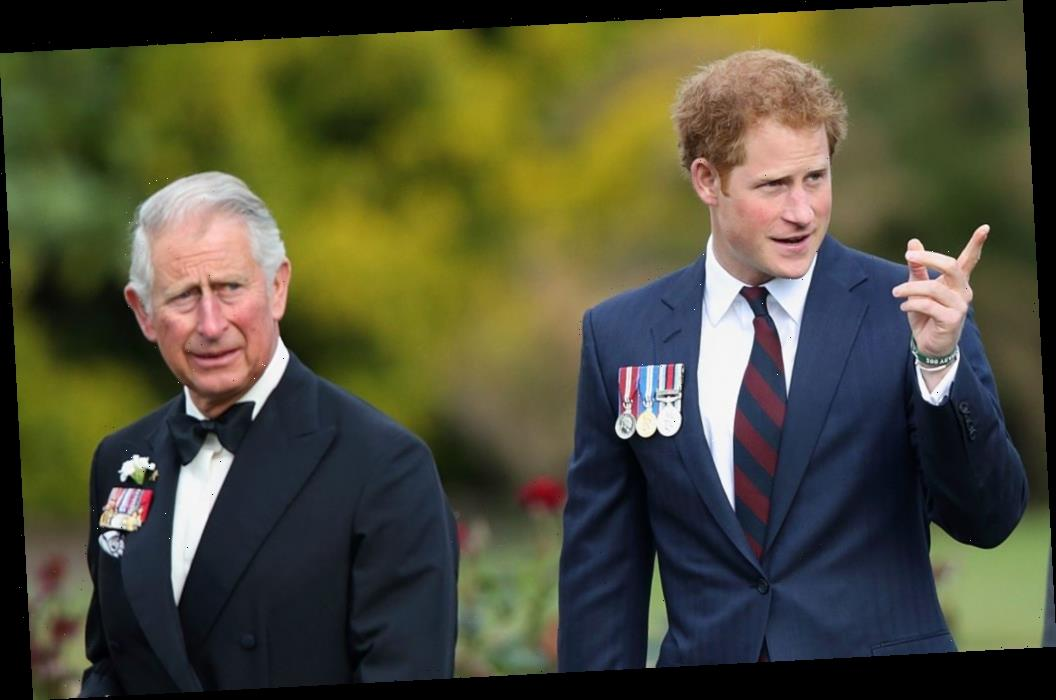 This is What Made Prince Harry So Angry That He Lashed Out At Prince Charles