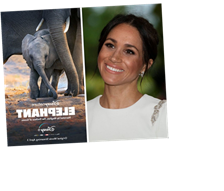 Meghan Markle's New Disney Movie 'Elephant' Is A Perfect Fit For The Whole Family