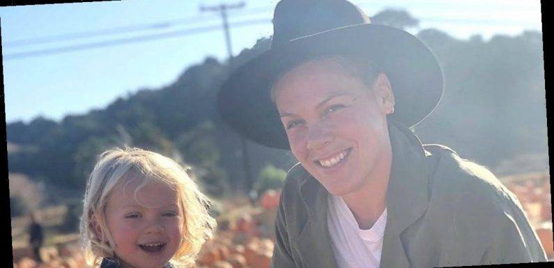 Pink Shows Off 'Delicious' Homegrown Veggies With Son Jameson: Watch