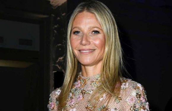 Gwyneth Paltrow's Gift for Son Moses? A Boob Puzzle