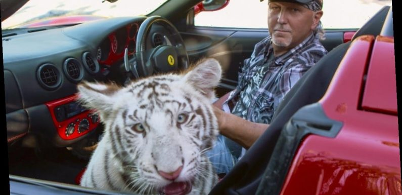 PETA Confiscated 3 Lions From Jeff Lowe's 'Tiger King' Zoo
