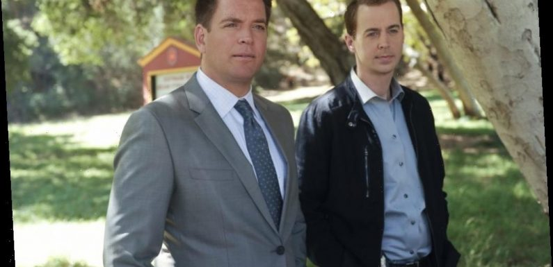 Sean Murray Reveals What Many People 'Don't Know' About Michael Weatherly