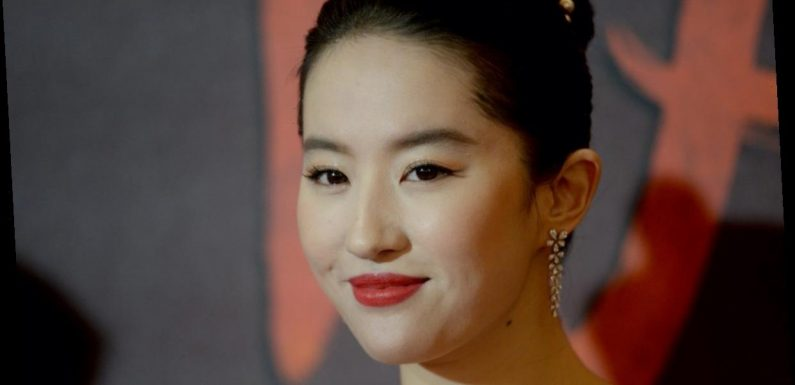 'Mulan' Star Yifei Liu Was Once a Cat Mom to 30 Feline Critters