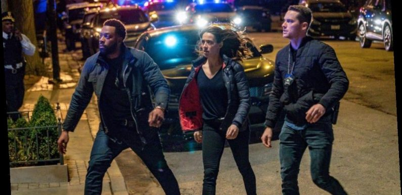 'Chicago P.D.': New Characters to Come in Season 8