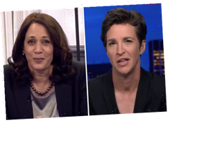 Did Kamala Harris Notice Fly on Pence? Watch Her Response to Maddow