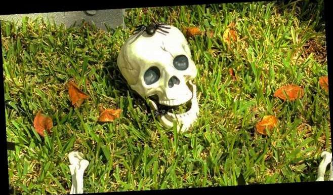 Texas woman's stripper-themed Halloween display leads to clash with homeowners association