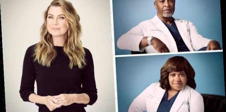 Grey's Anatomy season 17 cast: Who is in the cast of Grey's Anatomy series 17?