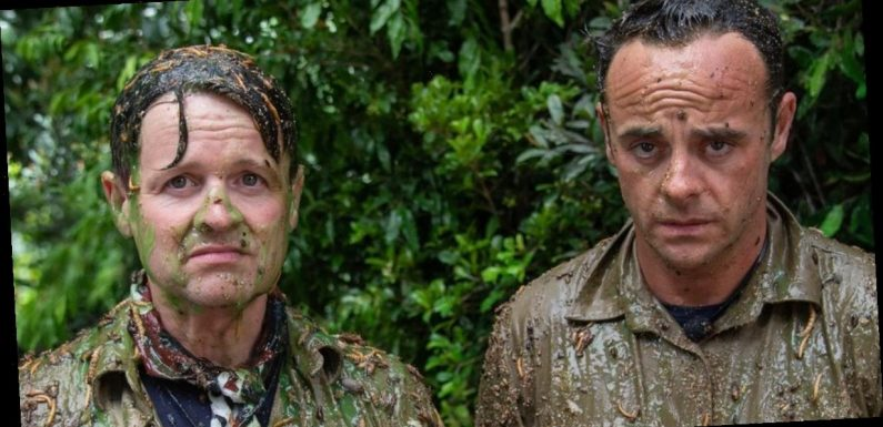 I'm A Celeb's Ant and Dec take on Bushtucker Trial to mark 20th anniversary