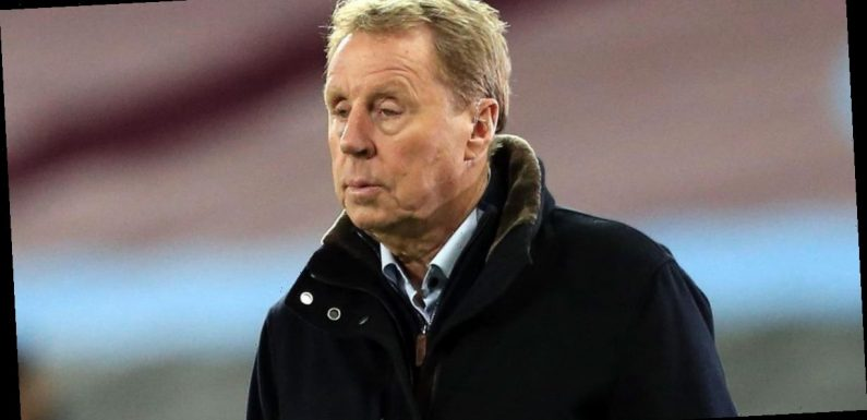 Harry Redknapp shares heartache as 11-year-old dog Lulu dies before Christmas