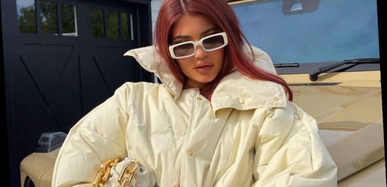 Kylie Jenner Gets Shamed by Anti-Fur Activists When Leaving Beverly Hills Store After Shopping Trip