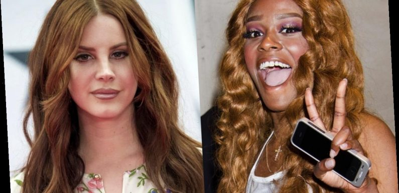 Azealia Banks Body Shames Lana Del Rey for Looking Curvier in New Candid Photo