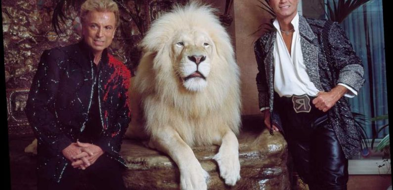 Siegfried Dies 8 Months After Roy: A History of Their Famous Partnership