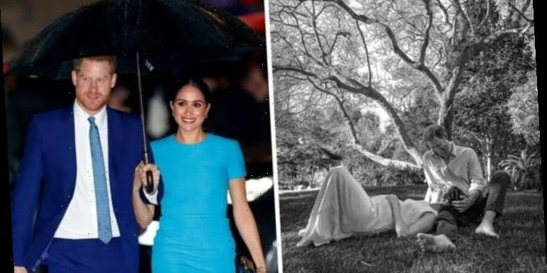 Meghan Markle and Prince Harry show 'intense sense of mutual joy' in pregnancy reveal