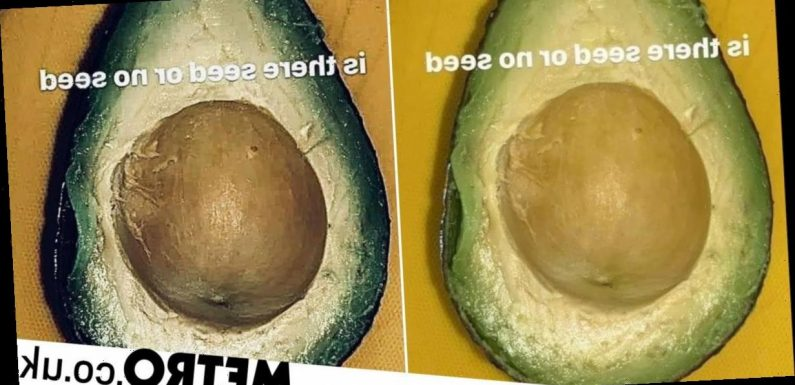 Does this avocado have a seed or not? Optical illusion leaves people divided