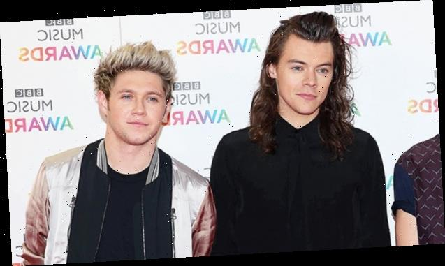 One Direction Fans Lose It After Photos Surface That May Confirm Harry Styles & Niall Horan Reunited