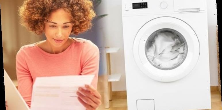 White good laws: New rules to slash energy bills by £75 and make white goods last longer