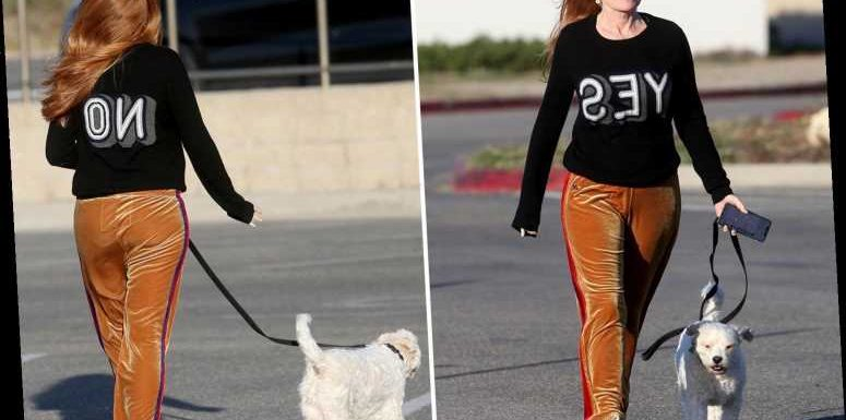 Patsy Palmer seen for first time since storming off GMB as EastEnders star walks dog in cryptic Yes/No outfit