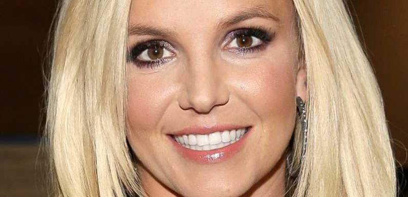 Britney Spears' Conservatorship Battle Just Took An Unexpected Turn