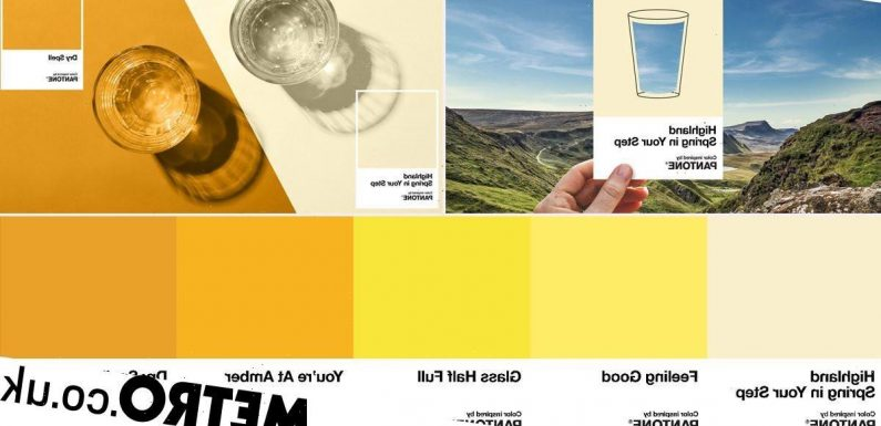 Pantone unveils a 'pee colour scale' to help you figure out if you're dehydrated