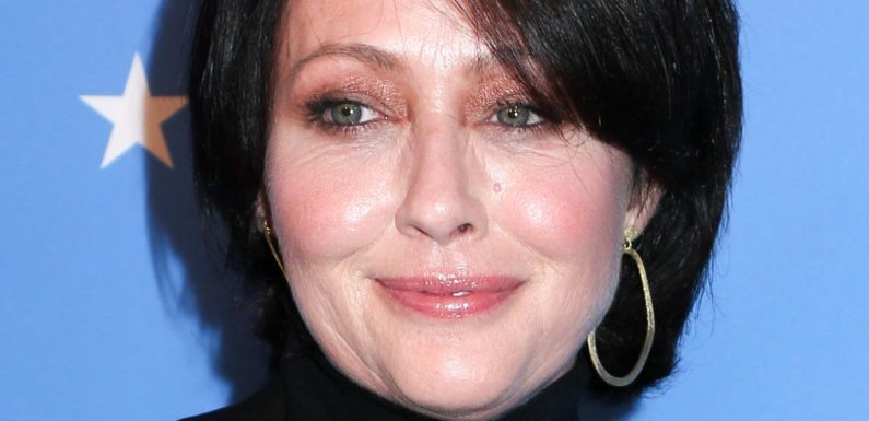 The Truth About Shannen Doherty's Ex-Husbands