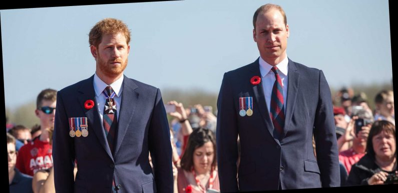"Yikes, Prince William Has Accused Prince Harry of Putting ""Fame Over Family"""
