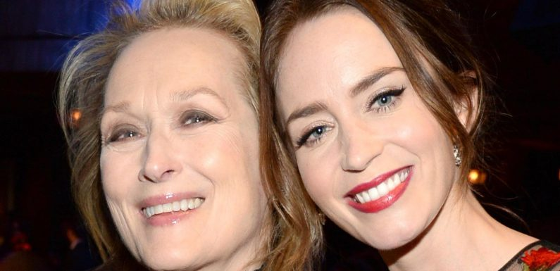 The Truth About Emily Blunt And Meryl Streep's Relationship