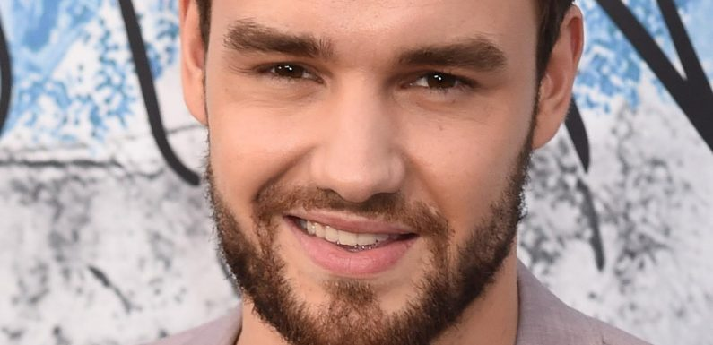 What We Know About Liam Payne's Split From His Fiance