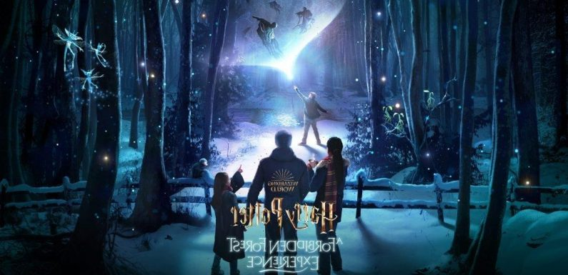 Harry Potter: A Forbidden Forest Experience To Open In The UK This Fall