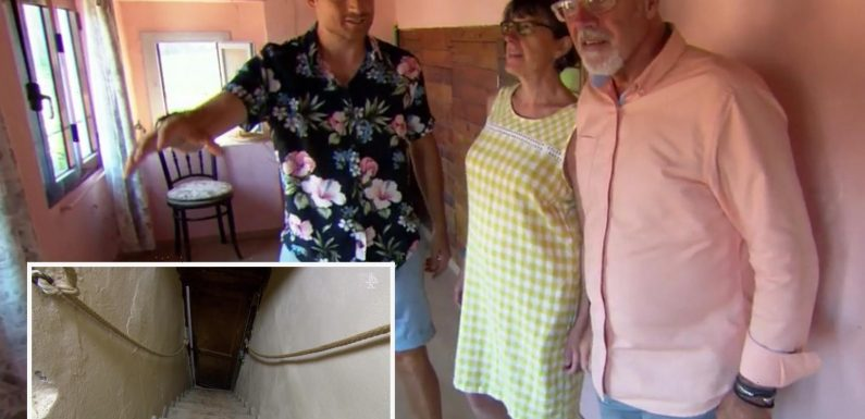 A Place in the Sun guest rips into villa with stairs so steep 'he'd need a climbing rope' to tackle them