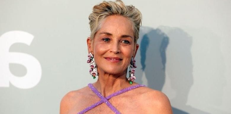 Sharon Stone Says Her Acting Job Is Being Threatened After She Demands Vaccinated Set