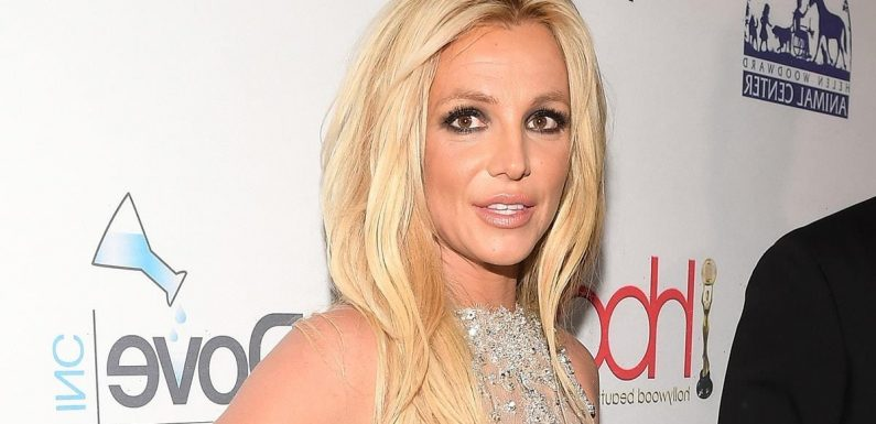 'TheWrap-Up' Podcast: Legal Experts Break Down the Britney Spears Conservatorship