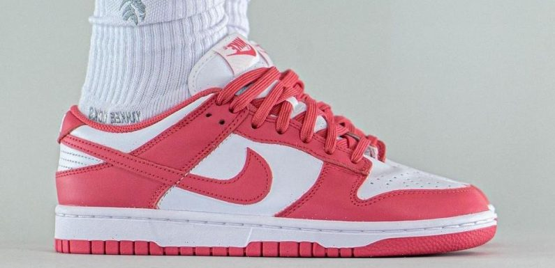"""On-Foot Look at the Nike Dunk Low """"Archeo Pink"""""""