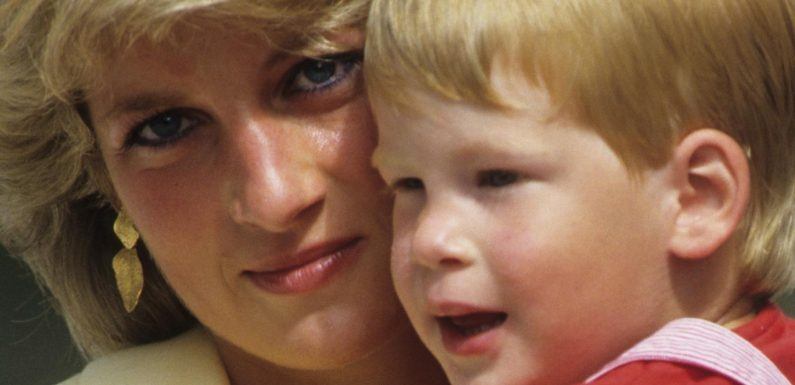 What Princess Diana Would Have Really Thought About Harrys Memoir, According To A Royal Expert