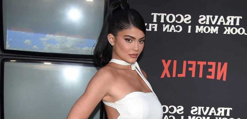 'Belly's Getting Big'! See Pregnant Kylie Jenner's Baby Bump Progress