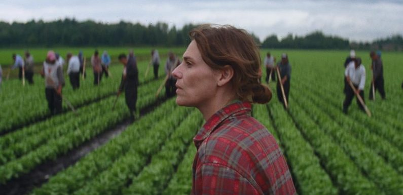 Canadian Producers Hit the Ground Running at the Toronto Festival