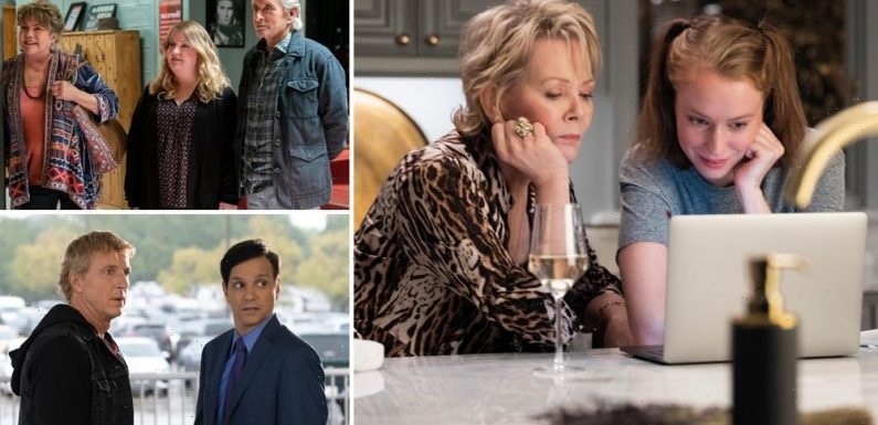 From Cobra Kai to Ted Lasso, Tense Relationships Make for Thoughtful TV