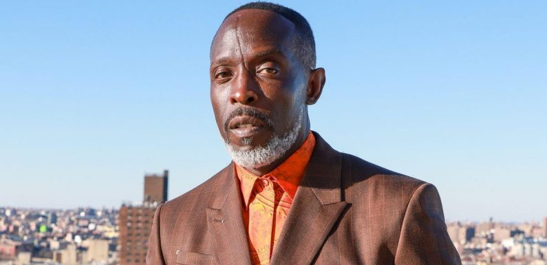 Inside The Wire star Michael K Williams tragic past as hes found dead