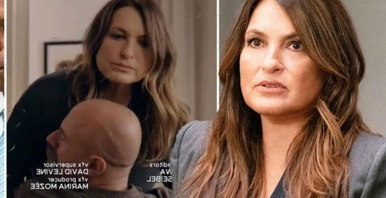 Law and Order SVU fans in meltdown as OC promo seals Stabler Meloni romance Happening!