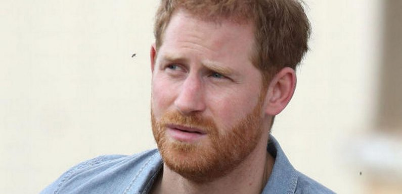 Prince Harry branded a professional whinger' in savage rant by Ann Widdecombe