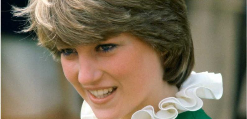 Princess Diana Documentary Exposes Woman Behind the Crown: a 'Feminist Role Model'
