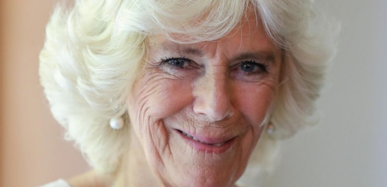 What Is Camilla Parker Bowles New Patronage?