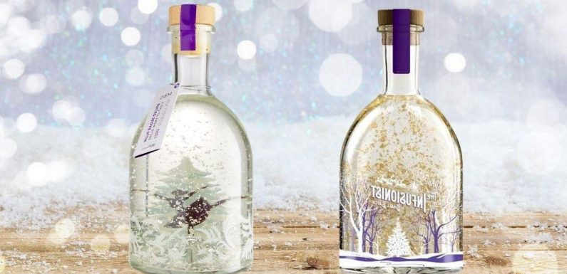 Aldi is selling dupe for the sell-out M&S snow globe gin – and its £6 cheaper