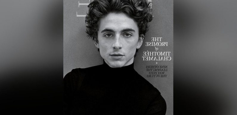 Timothee Chalamet Explains Why He Stays Away From Superhero Movies